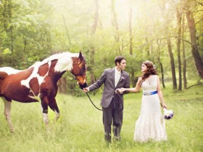 Lovely Farm Wedding Animals