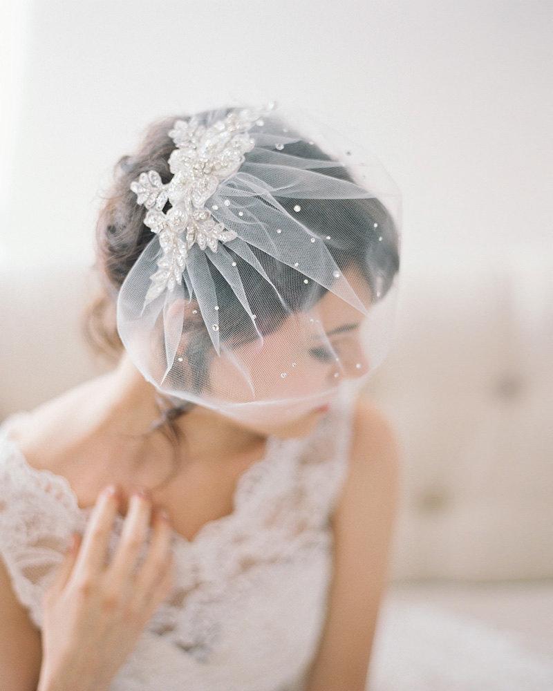 03-Crystal-Lace-Birdcage-Veil