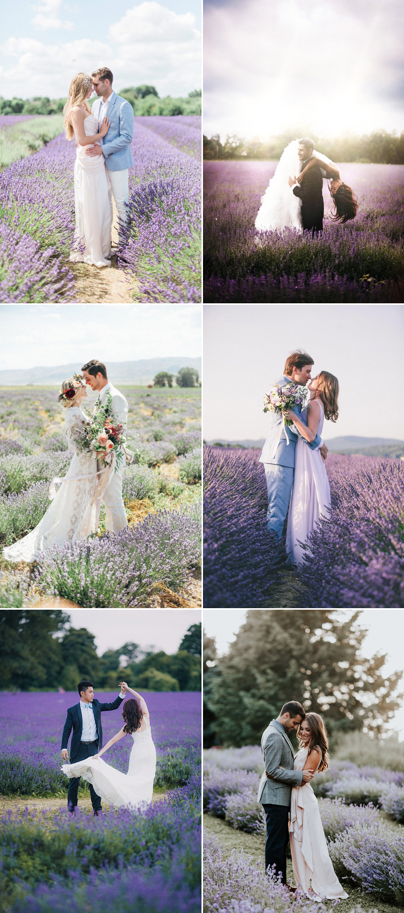 field-engagement01-lavender