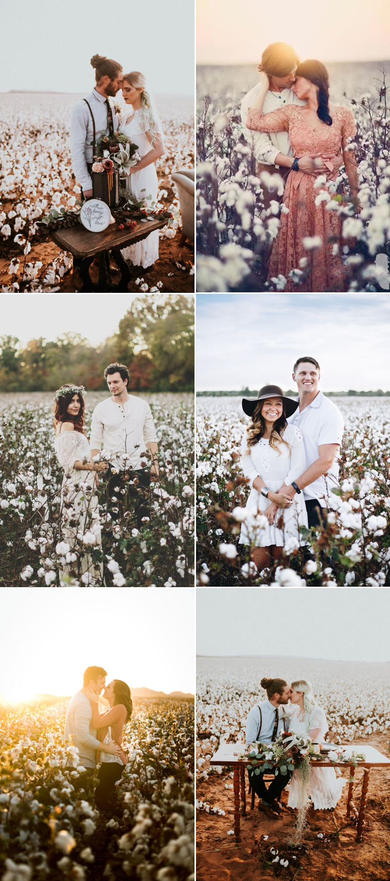 field-engagement04-cottonfield