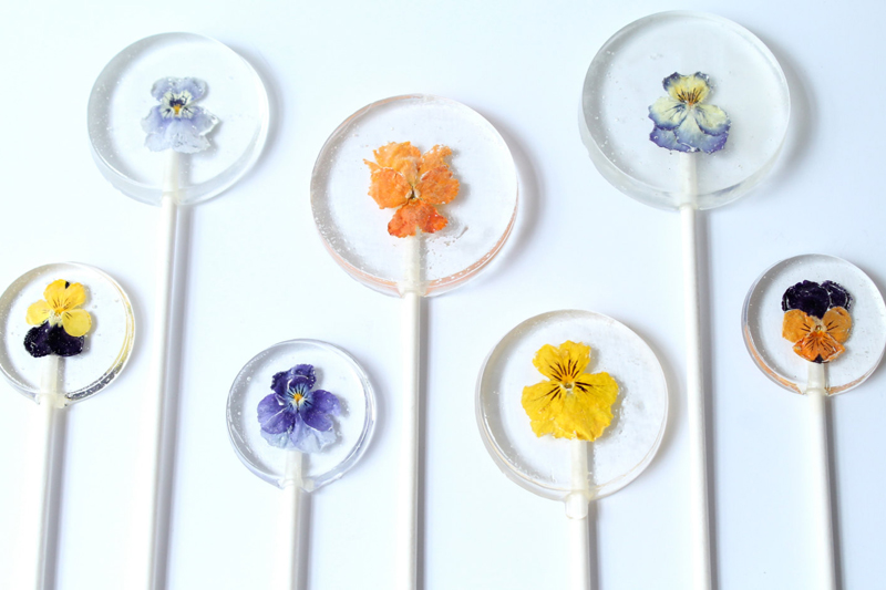 02-Viola Pansy Flower Lollipops