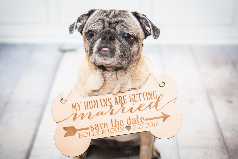 13-Pet Save the Date Sign