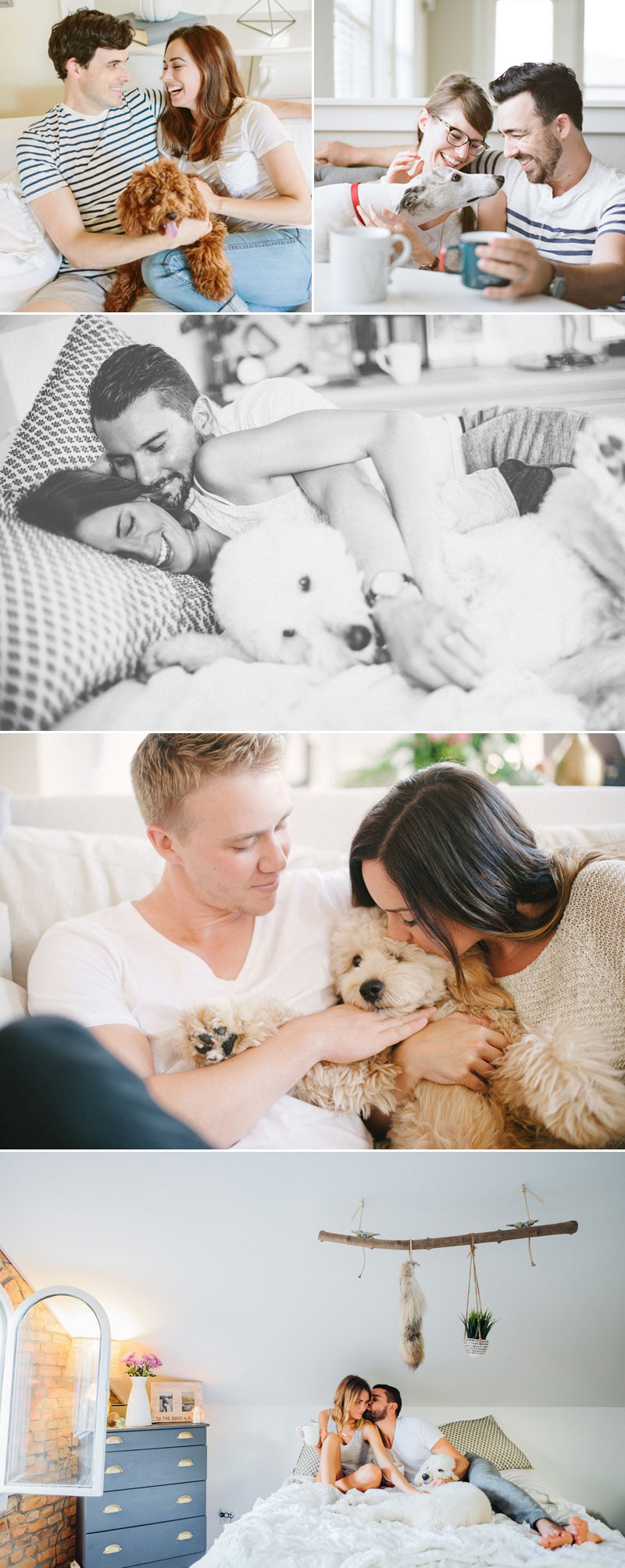 How To Include Your Furry Friends? 18 Super Adorable Engagement ...