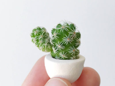 Thimble Cactus and Mini Ceramic Planter
