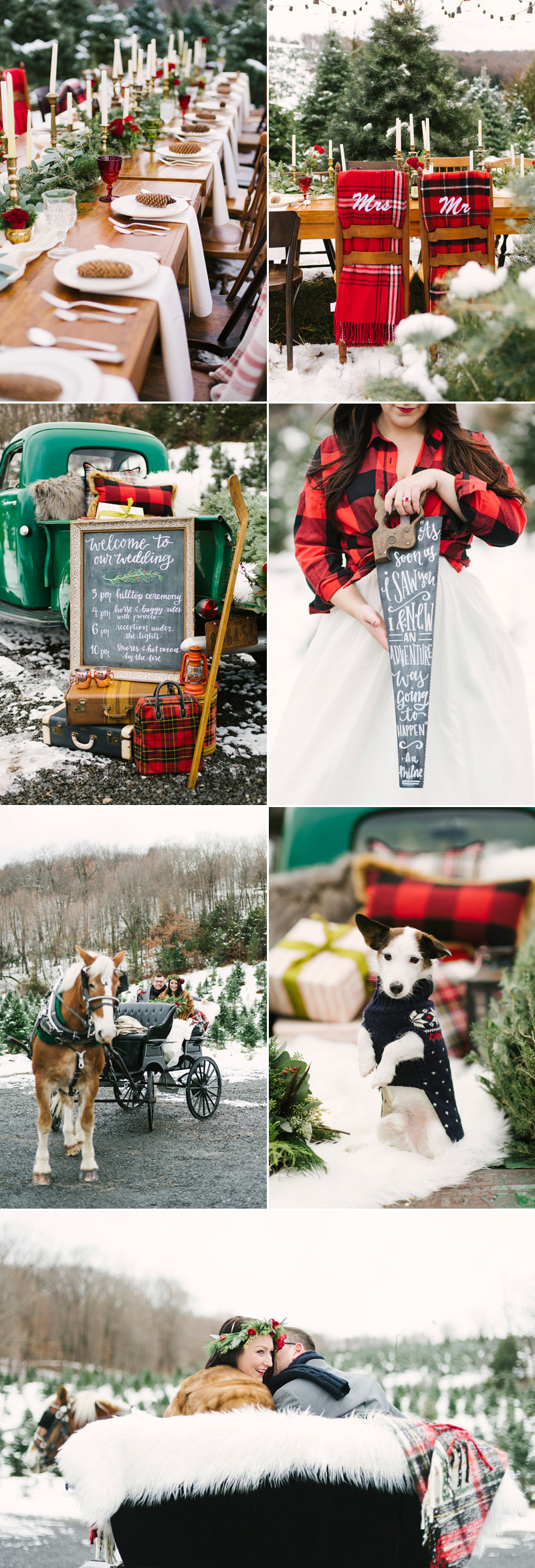 christmas02-Christmas Snowy Tree Farm Wedding (Alicia King Photography)
