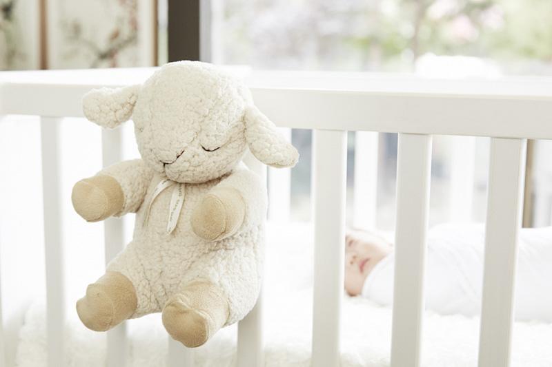 02-Cloud B Sleep Sheep
