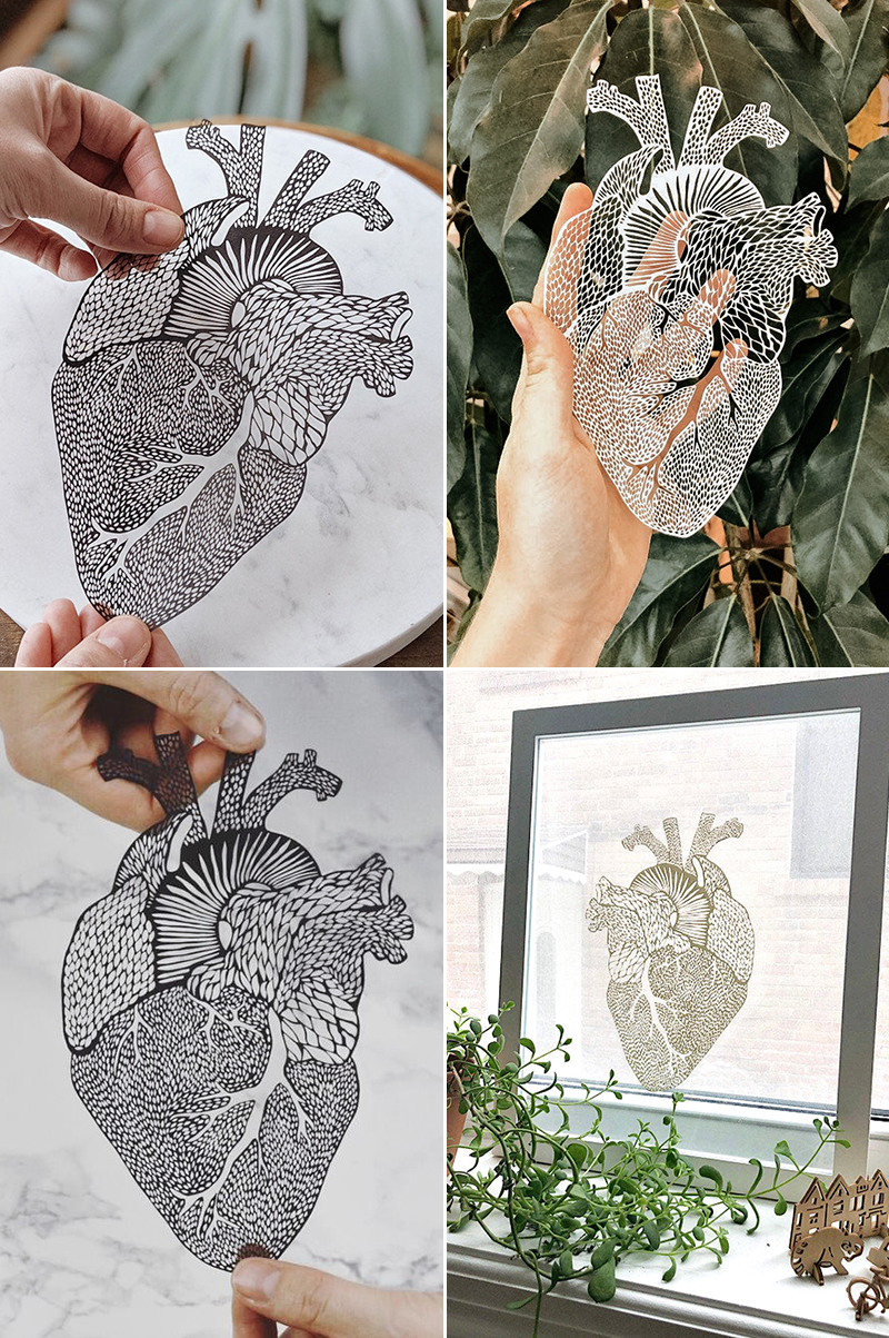 Anatomical Heart Laser-Cut Papercutting Artwork
